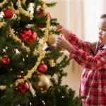tree_2607913b