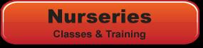 Music Bus Nursery Training